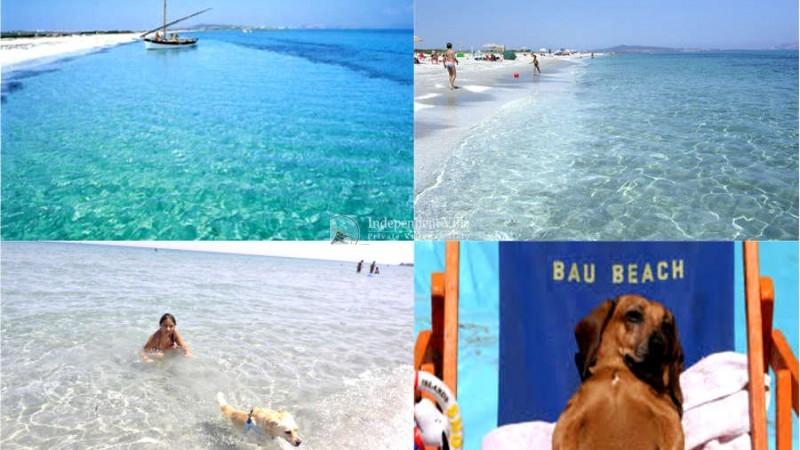 foto spiaggia stintino