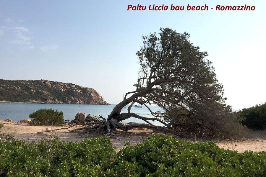 Poltu liscia bau beach