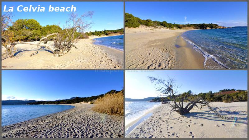 110 La Celvia beach