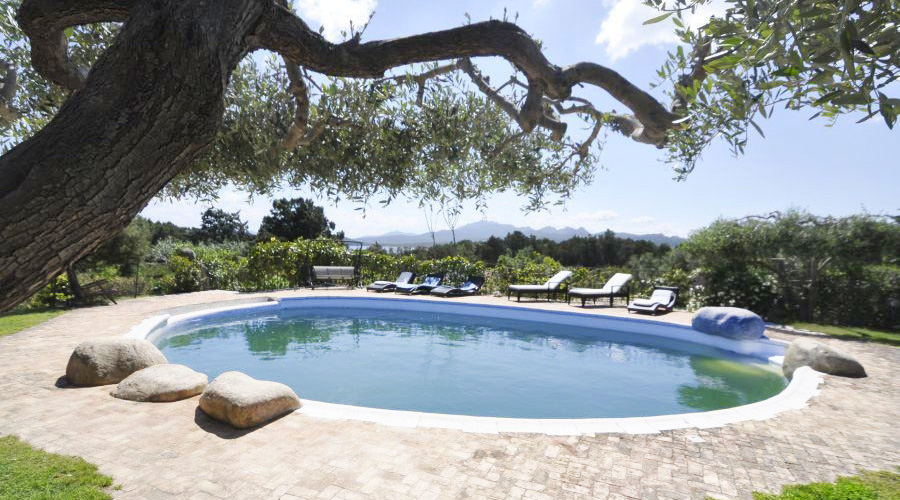 Ville Costa Smeralda - Villa La Celvia Top Luxury for rent - Villa à côte émeraude