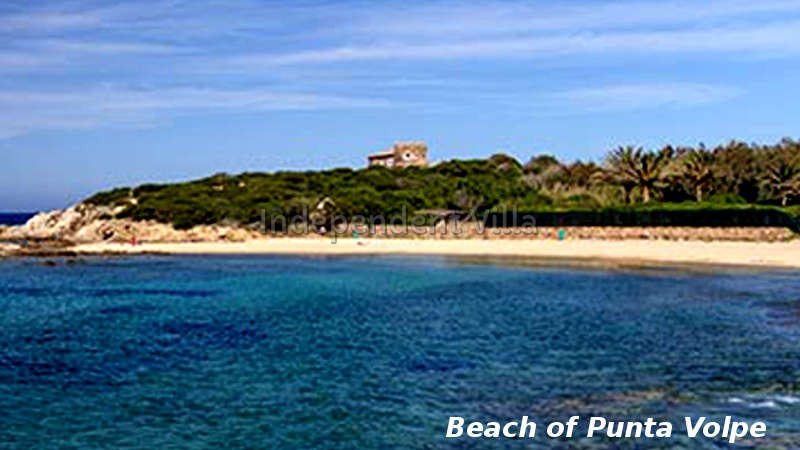 24 spiaggia punta volpe