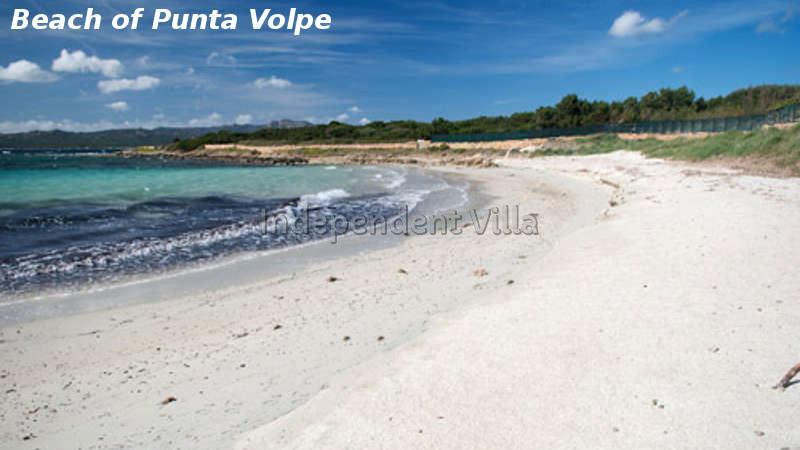 25 spiaggia punta volpe
