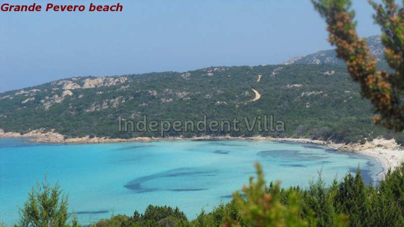 43 Grande Pevero beach