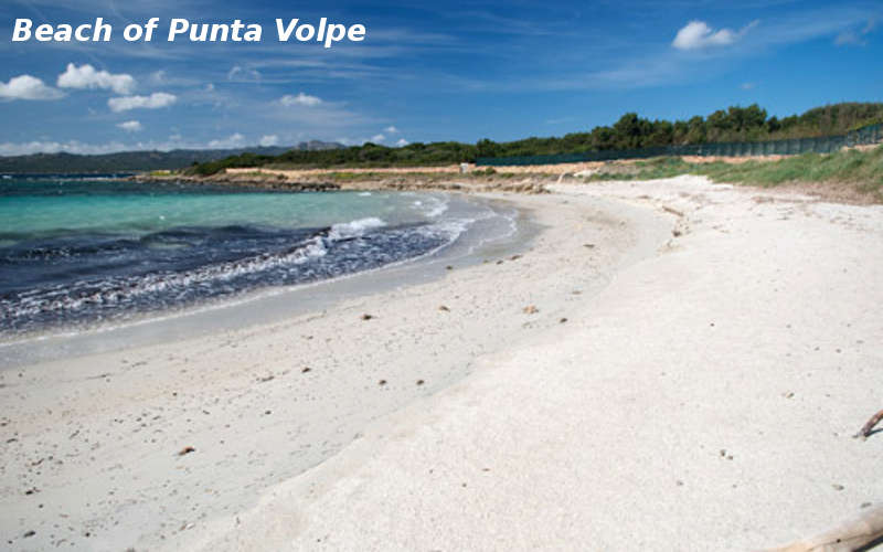 spiaggia punta volpe3