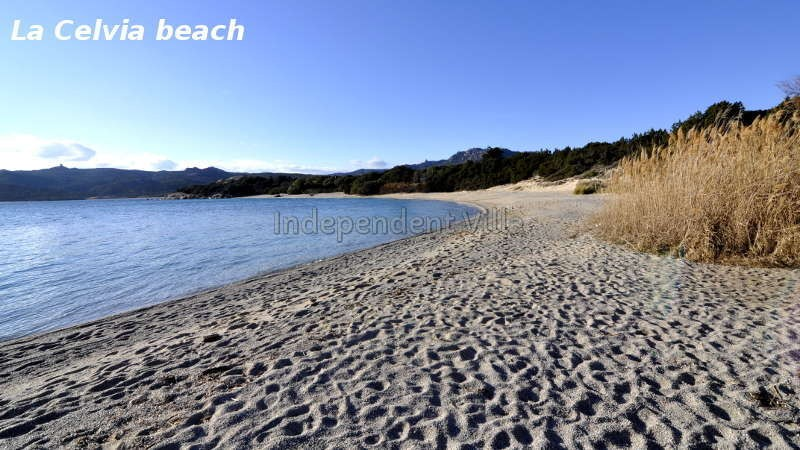 37-spiaggia-la-celvia