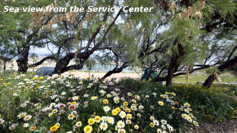 92-sea-view-from-service-center