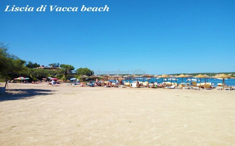 Villa Prince lux TERRITORY-LISCIA DI VACCA -