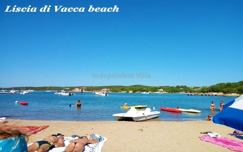 Villa Prince lux  TERRITORY-LISCIA DI VACCA - 3