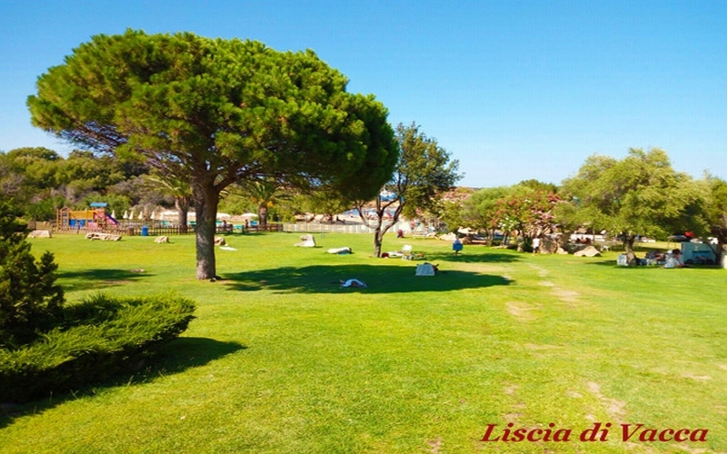 Villa Prince lux  TERRITORY-LISCIA DI VACCA