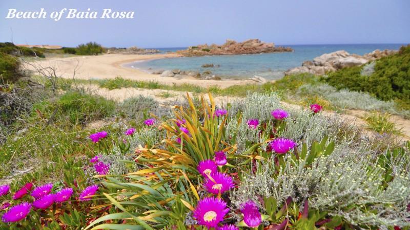 107 Baia Rosa